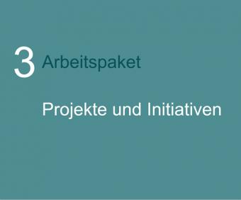 3. Arbeitspaket: PROJEKTE / INITIATIVEN